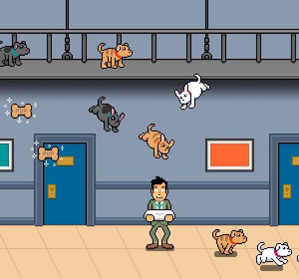 Jimmy Fallon Puppy Jump